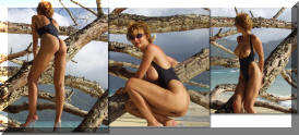 The Versailles one piece topless thong swimsuit by Brigitewear